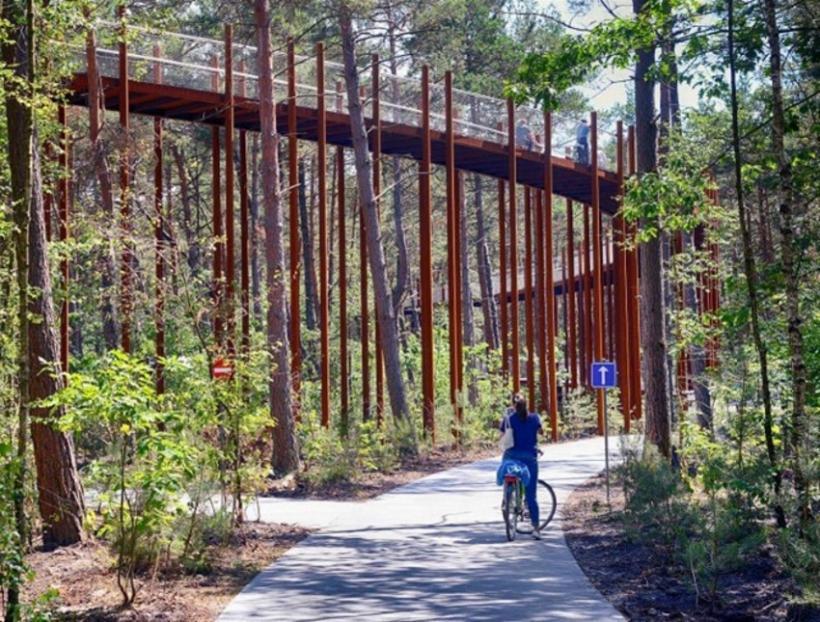 Het succes van de Limburgse fietsbeleving - Limburg - 2HB
