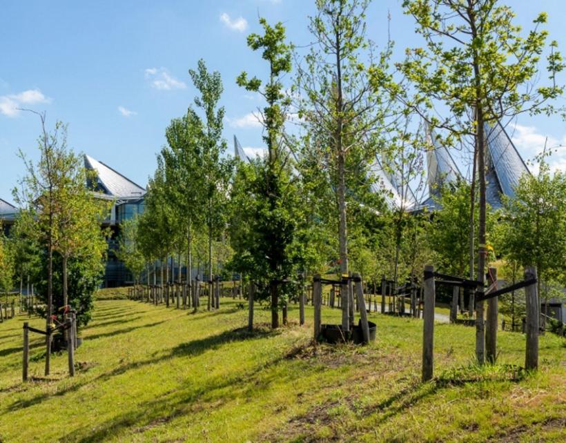 Groene toekomstplannen voor Nieuw-Zuid - 2de verblijf in een stad - 2HB