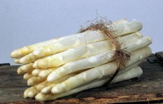 Het witte goud - Culinair - 2HB