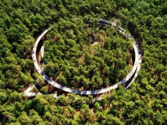 Fietsen door de bomen van start - Limburg - 2HB