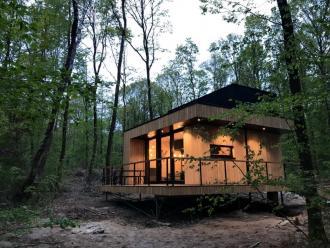 Forest Cube, ecologie ten top binnen het tweede verblijf segment - Project - 2HB