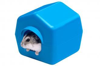 Hamsterhuren - Immo - 2HB