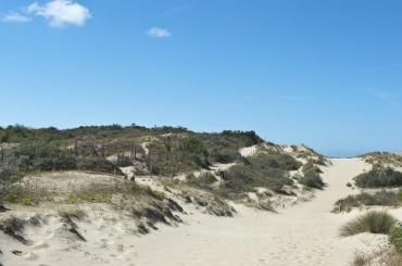 La Brise des Dunes - Kust - 2HB