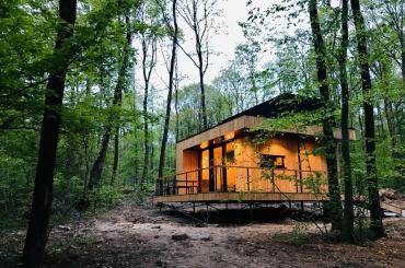 Forest Cube - Ardennen - 2HB